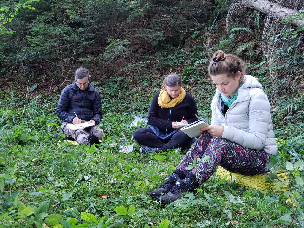 Workshop im Wald